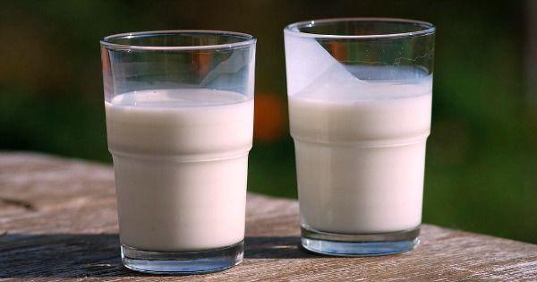 Dinkel- oder Hafermilch selber machen kostet nur 0,30 Euro/Liter - und ist super lecker und gesund!