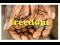 Seed Freedom, Permaculture and the March Against Monsanto - David Holmgren - YouTube