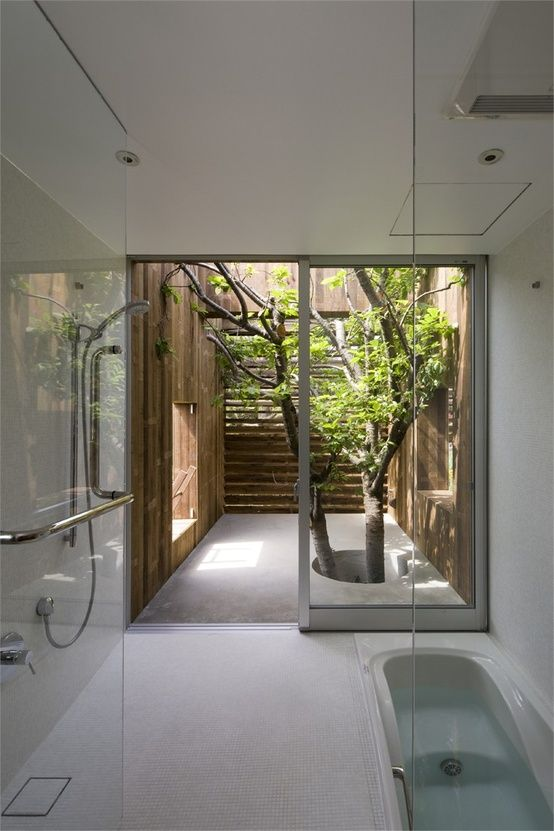 internal courtyard - tree - simple - walk-in tub - rimless shower