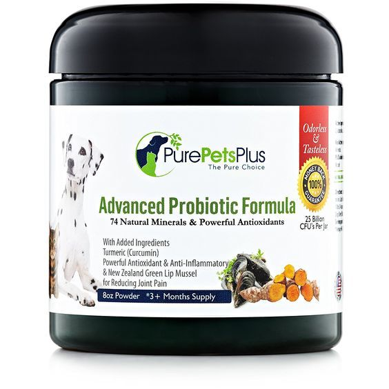 Advanced Probiotics for Dogs Supplement Powder with Organic Turmeric and Green Lipped Mussel to Support Hip, Skin and Digestive Health -- See this great product.