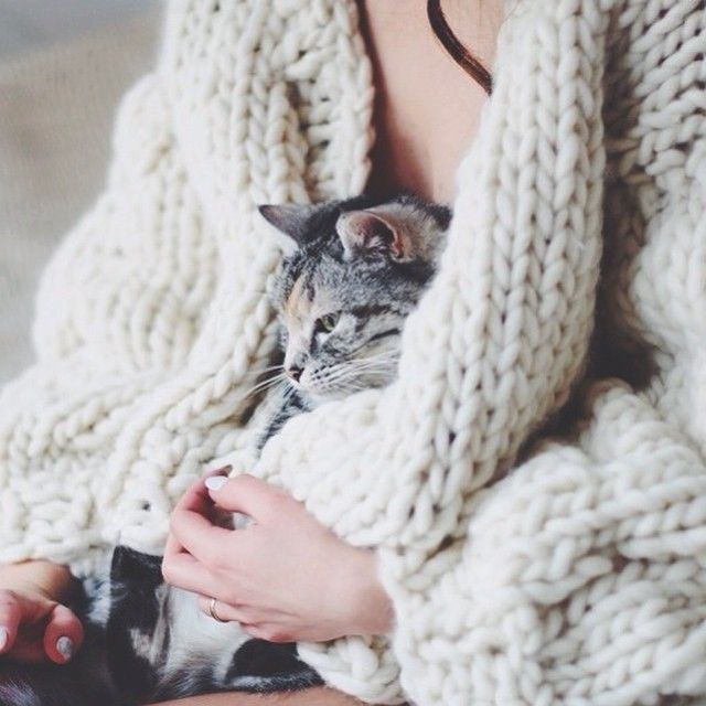 happy cozy afternoon. my cat, my knitted cardigan and I