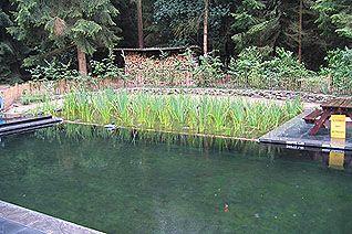Natuur zwembaden