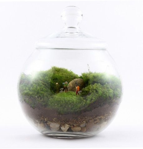 Twig's little green worlds of moss - here is Uncharted Territory complete with two tiny adventurous hikers. Twig Terrariums ship nationwide. Visit www.twigterrariums.com!