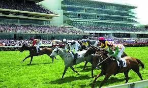Horse racing is undoubtedly one of New Zealand's favourite sports to bet on. This thrilling sport offers punters a wide range of betting possibilities, and can be very exciting indeed! Many punters have become seasoned experts at betting on the horses. Horse racinf is freely provided by online casino to the players. #casinoonlinehorseracing https://mobilebetting.kiwi/horse-racing-tips/