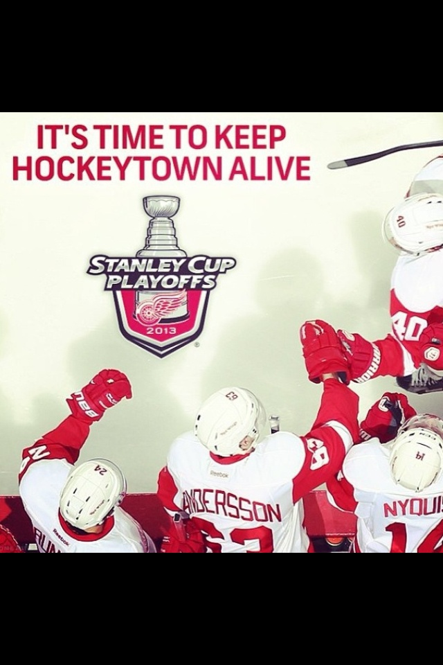 NHL Playoff Hockey. Go Detroit Red Wings