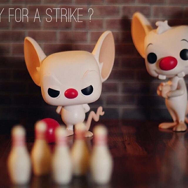"The Brain & Pinky ""Ready for a strike"" -- #TFP_WindowSeat #TCB_DividedWeFall  #toyphotography #originalfunko #funko #funkopop #toyartistry #popvinyl #toystagram #toydiscovery #toys4life #funkofunatic #toyplanet #toyunion #collectibles #toygroup_alliance #toycrewbuddies #topfunkophotos #toypops2 #epictoyart #toptoyphotos #toycommunity #lumix #gx8 #thebrain #pinky #stevenspielberg #warnerbros #pinkyandthebrain #minusetcortex"