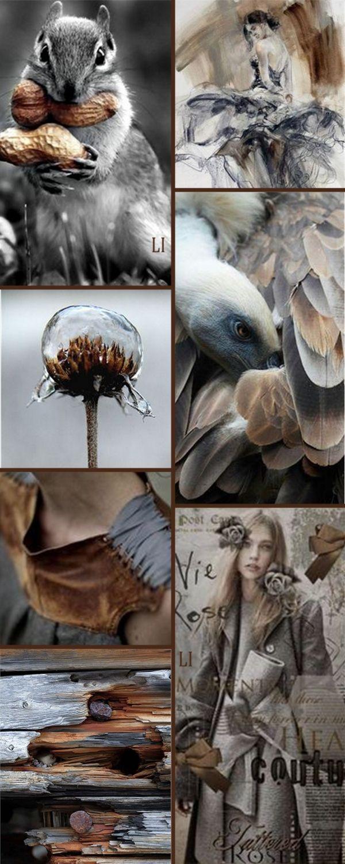 brown | black | grey ღ Lu's Inspiration