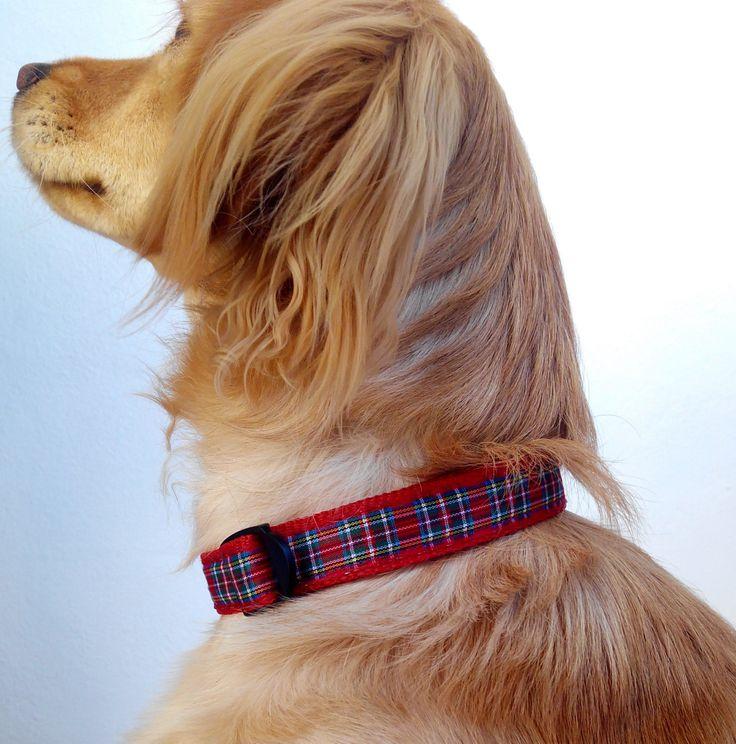 Collar de perro en tartán rojo, complementos y accesorios para mascotas. Diseño exclusivo por Mucka Pets. de MuckaPets en Etsy