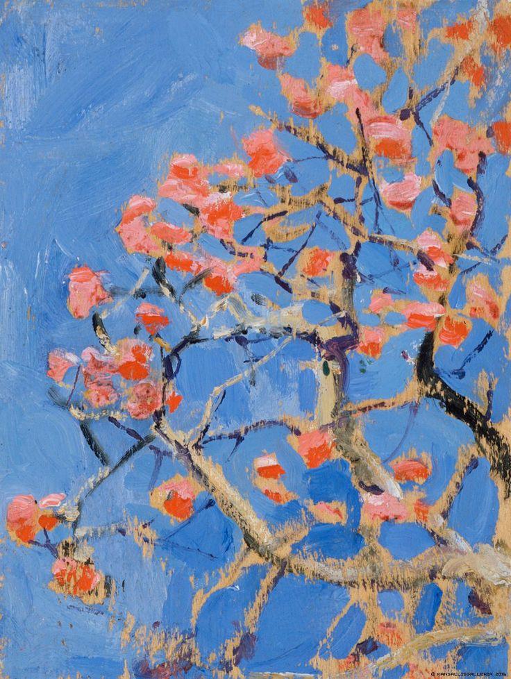 Kukkiva korallipuu, 1909-1910
