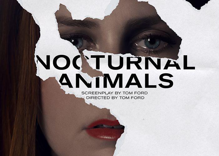 Coluna Indicações de Séries e Filmes: Filme Animais Noturnos!
