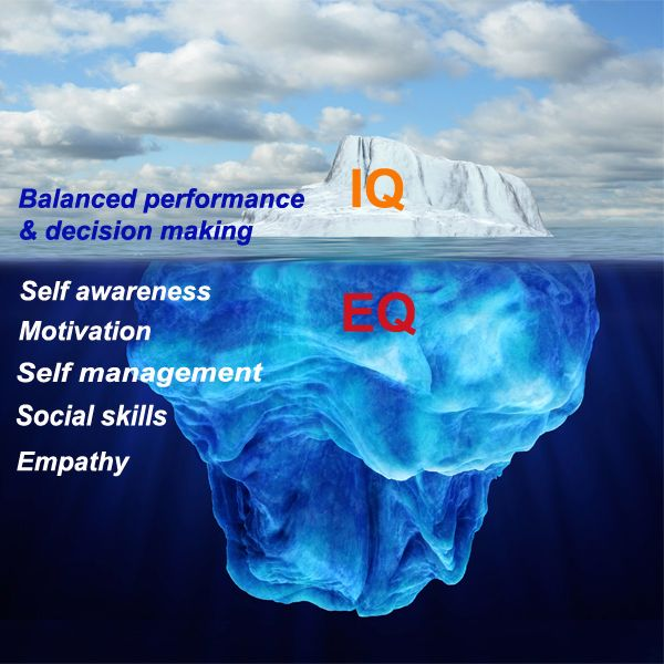the intelligence is just the tip of the iceberg, there is so much more to success than being smart. Emotional intelligence is super important, it is the foundation.