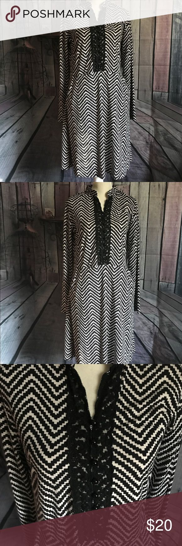 ❤️Adorable Chevron print Dress❤️ Black and white chevron print midi dress. Looks super cute with tall black boots in the fall. This dress has a hidden pocket on each side (shown in pictures) and lace detail on the top front (also pictured). Reborn Dresses Midi