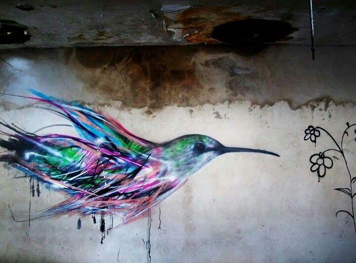 Bird, Sao Paulo