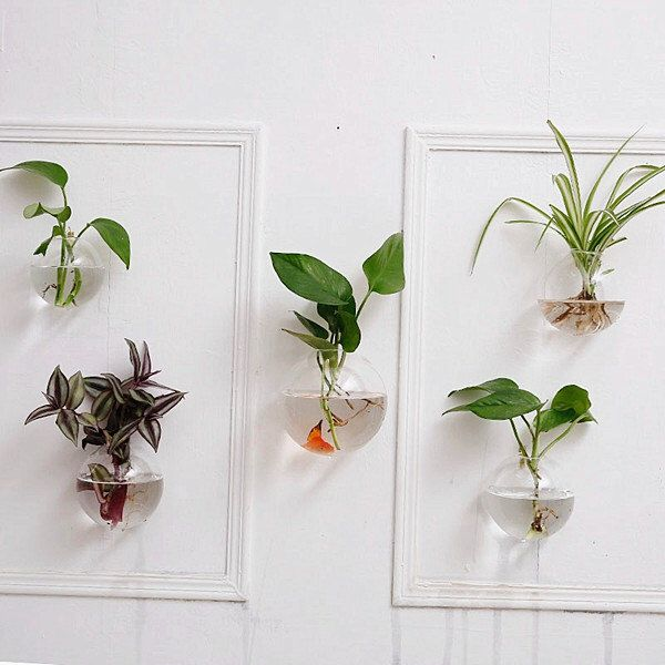 A Set Of 5 Empty Bubble Shape Glass Wall Terrariums// Indoor Wall Planters/