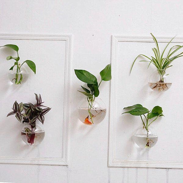 Indoor Wall Planters] Best 25 Indoor Wall Planters Ideas On ...