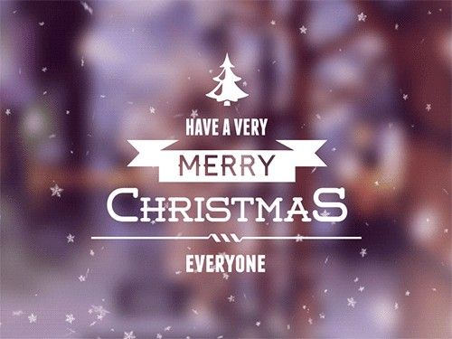 The 25+ best Funny merry christmas quotes ideas on Pinterest ...