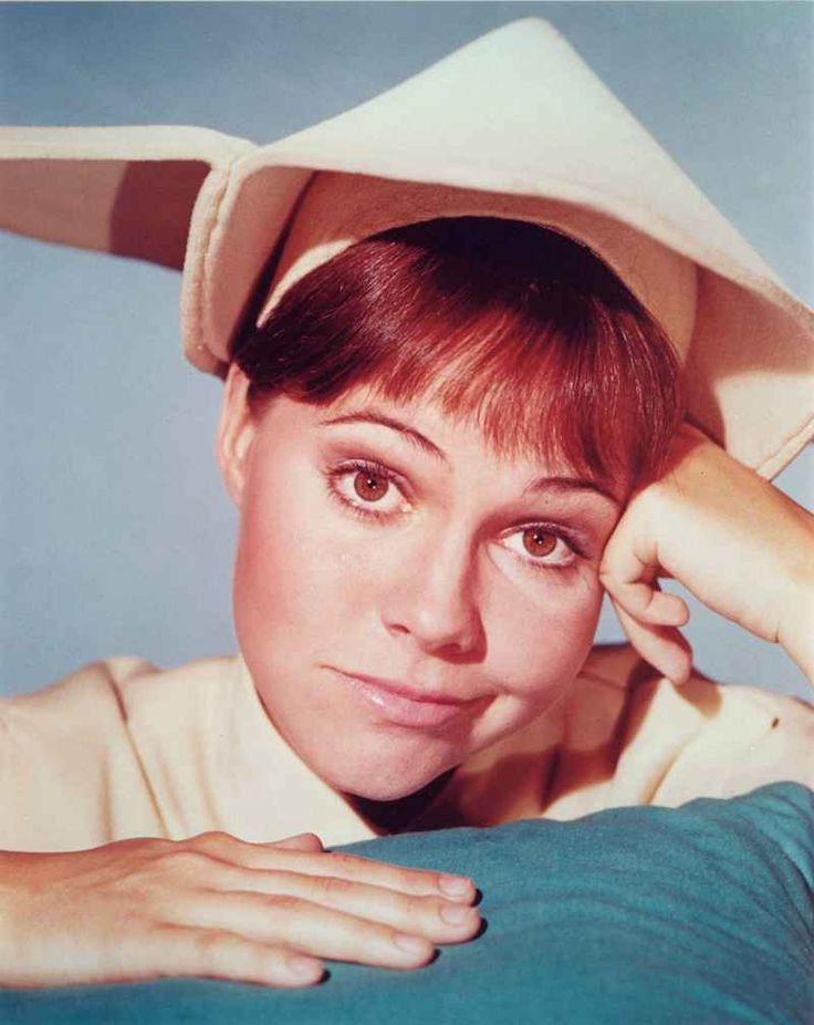 The Flying Nun, starring Sally Field, Marge Redmond, Madeleine Sherwood and Alejandro Rey, 1967-70