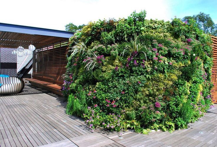 A vibrant and attractive rooftop vertical garden in Lawrence, Long Island