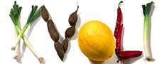 Ganache - chokoladeovertræk — Kvalimad