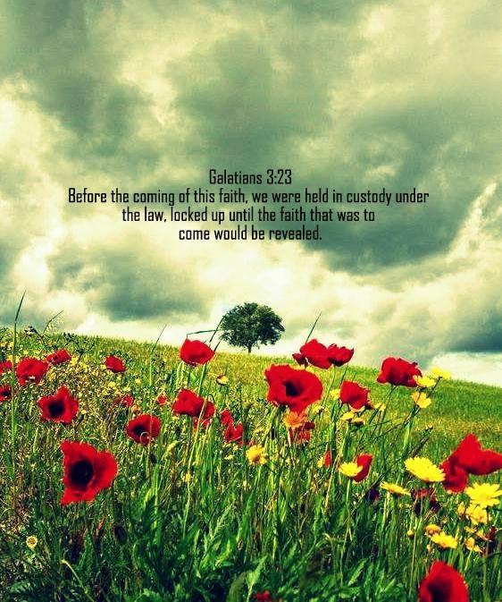 Galatians 3:23 niv | Bible Scripture Pictures | Scripture