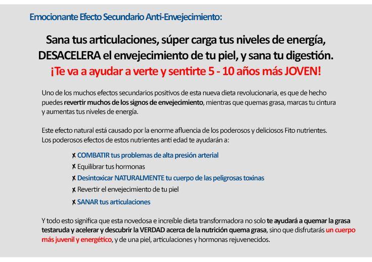 www.pierdagrasaabdominal.com alimentos-quema-grasa-libro.html