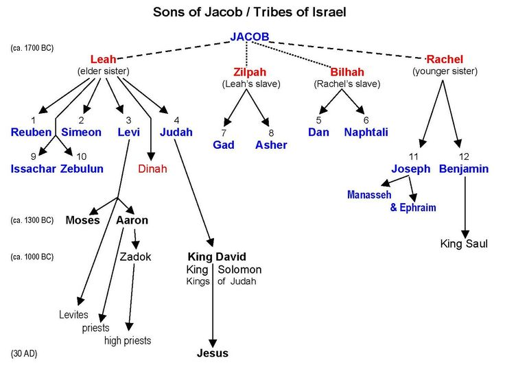 12 tribes of israel family tree