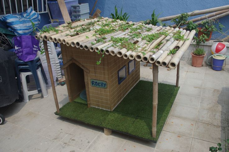 Check this idea out and build a cozy tropical dog house for you, pupil!