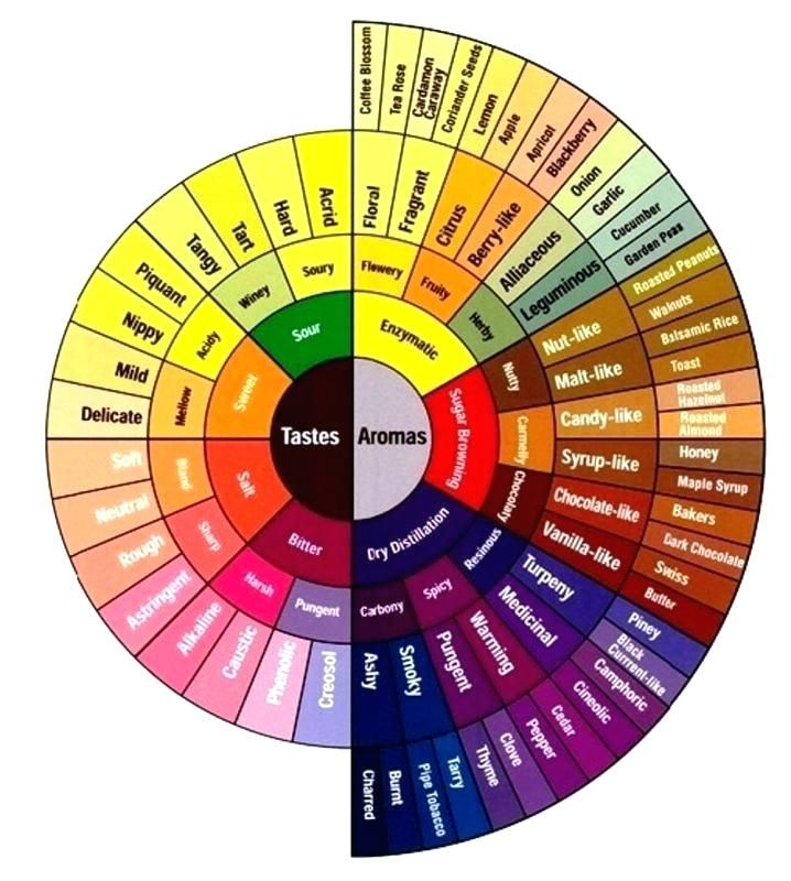 innovation idea interior design color wheel architecture on interior designer paint colors id=62541
