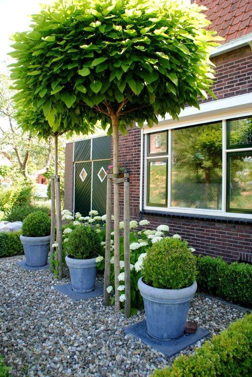Tuinaanleg voortuin Piershil Van der Waal Tuinen hoveniersbedrijf LRES (3).JPG (JPEG-afbeelding, 514 × 768 pixels)
