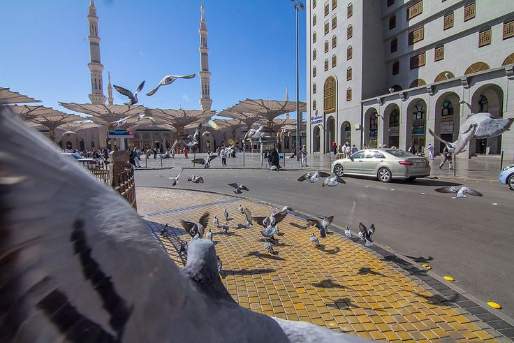 Beautiful of #Madinah #21 - Bird Eye View :)