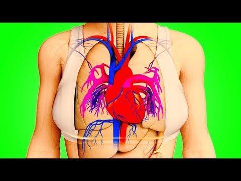 Тело Предупредит Вас За Месяц До Инфаркта - YouTube