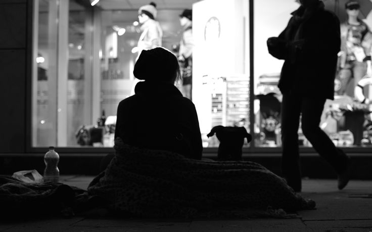 withdog by zibi t on 500px