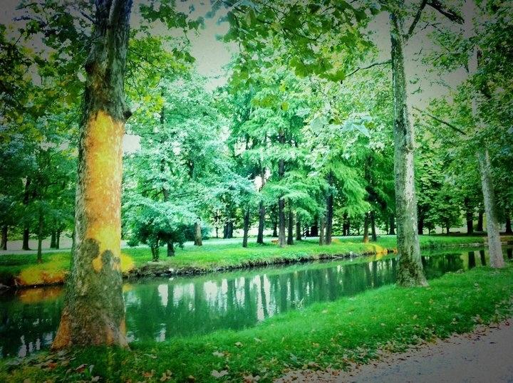 Parco Lambro. E l'amore disegnato sugli alberi.