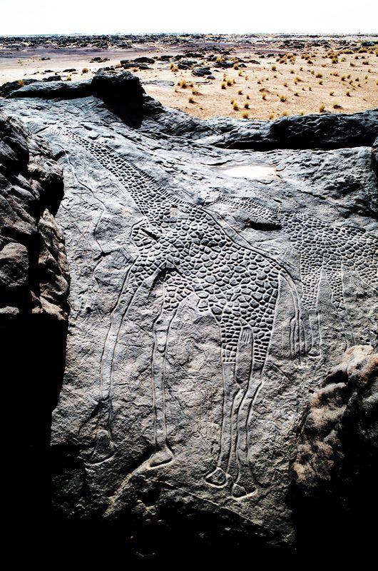 the worlds largest rock art petroglyph dabous giraffe - 532×800