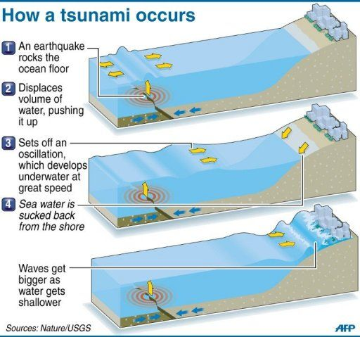 tsunami science project Give your tsunami science project a little extra something with this colorful poster  idea featuring lots of room for information and a standout design, this poster is.