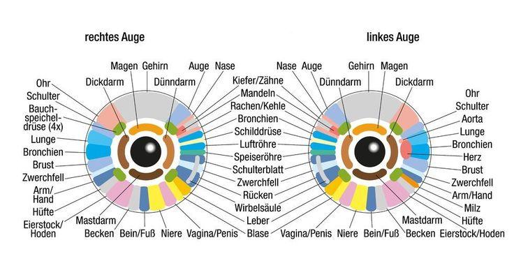 Das Auge – mehr als der Sitz der Seele: Dies sagt deine Iris über DICH aus! - ☼ ✿ ☺ Informationen und Inspirationen für ein Bewusstes, Veganes und (F)rohes Leben ☺ ✿ ☼