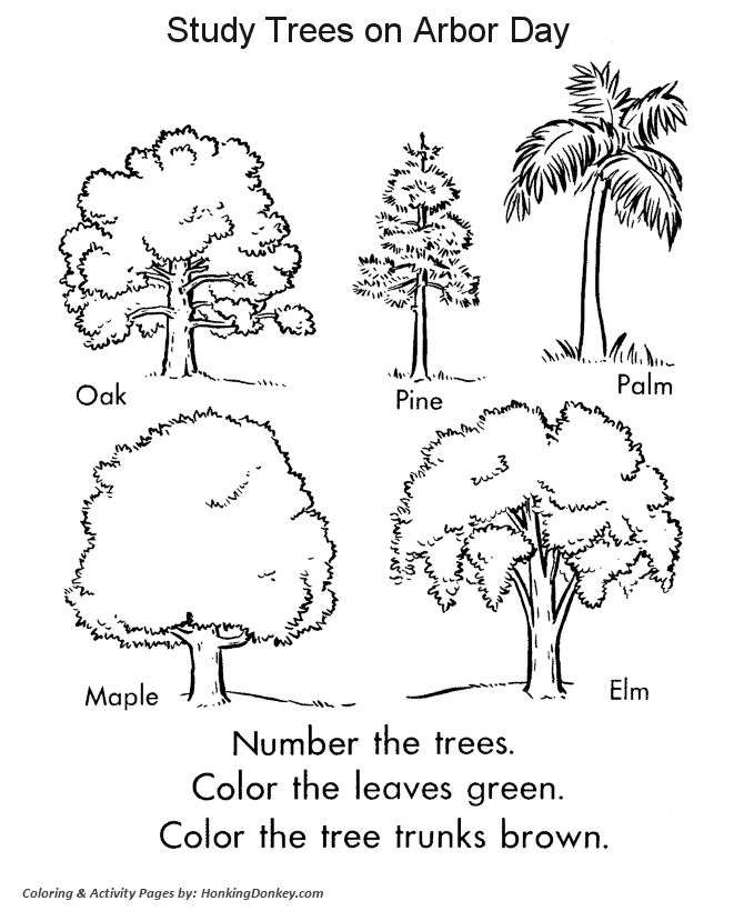 52 best Trees Coloring Sheets images on Pinterest