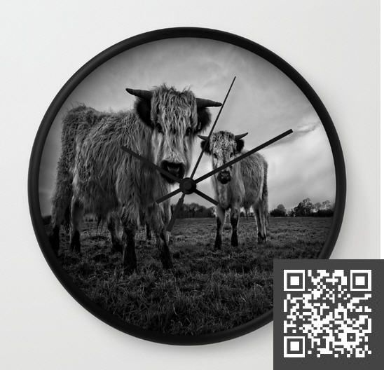 1000 Ideas About Highland Cattle For Sale On Pinterest