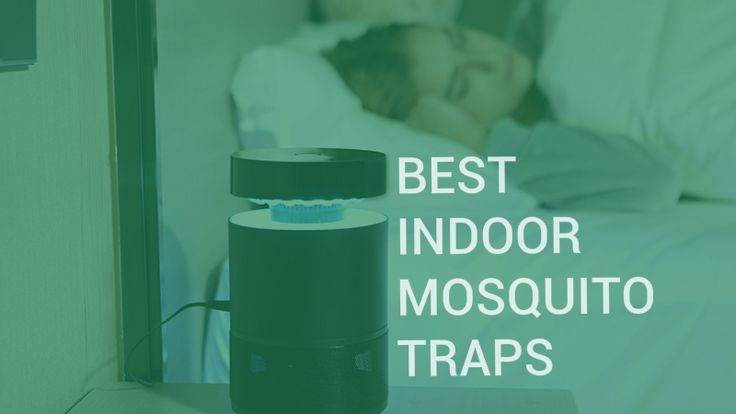 Using an indoor mosquito trap is an effective way how to protect your house from insects without having to use chemicals and products that contain DEET.