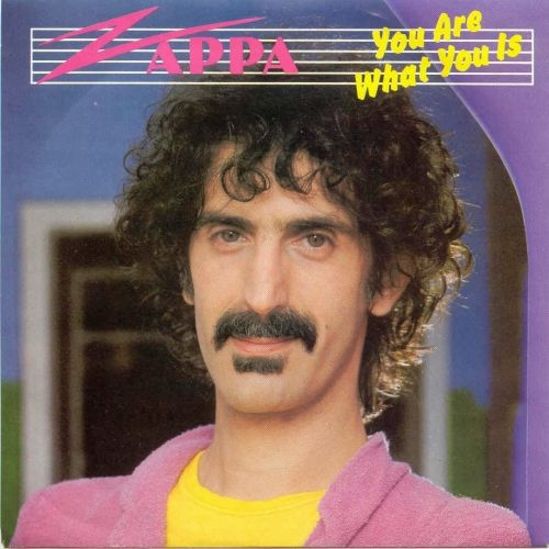 """Behind The Cross – Frank Zappa """"You Are What You Is"""""""