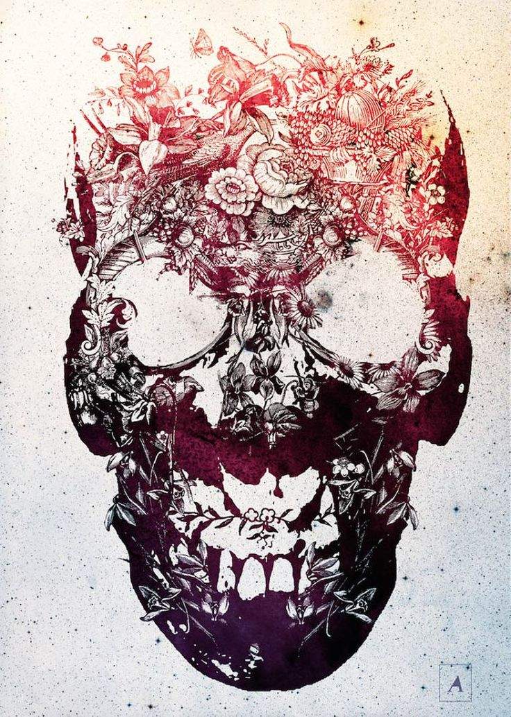 Ali-Gulec-skulls-6