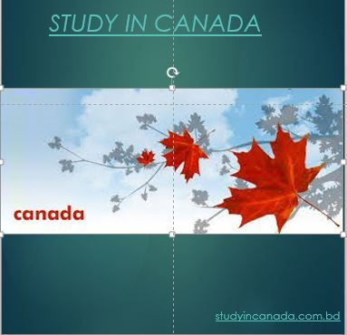 The education in Canada is publicly-funded and private , including: community colleges/ technical institutes, career colleges, language schools, secondary schools, summer camps, universities and university colleges. Education responsibility under the Canadian constitution, which means there are significant differences between the education systems of the different provinces. Canada education is important to Canadians, and standards across the World.