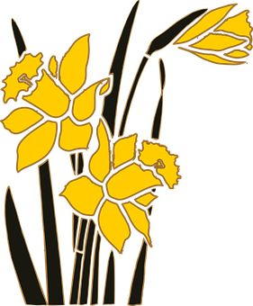 Λουλούδι, Κήπο, Νάρκισσος, Φυτό