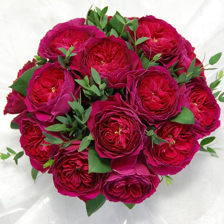 Red Garden Rose Bouquet 93 best flowers garden roses images on pinterest | garden roses