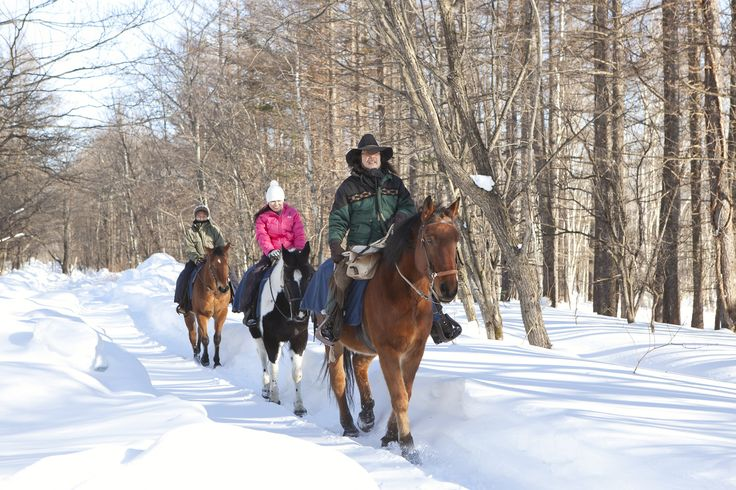 A unique and majestic experience, guests can discover untouched parts of the mountain on horseback. Stunning, snow-covered landscapes and native wildlife await
