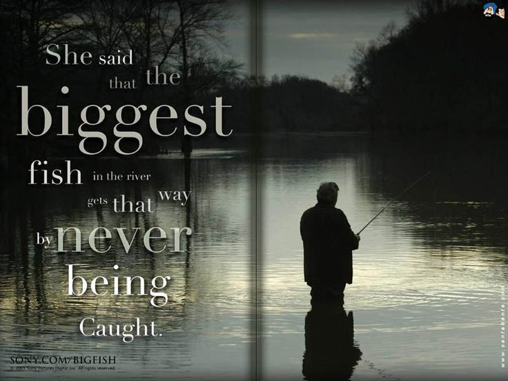 Best 25 fish quotes ideas on pinterest anxiety relief for Inspirational fishing quotes