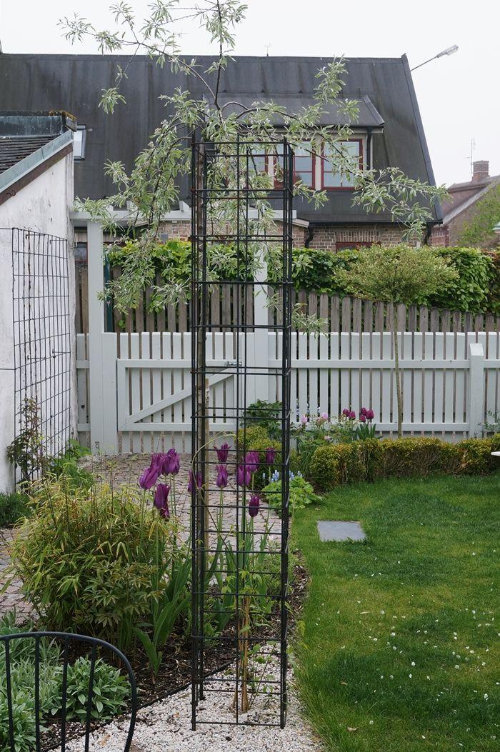 120 best Garden images on Pinterest | Landscape design, Flowers ...