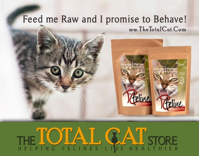 50 best homemade raw cat food how to make images on pinterest tcfeline is a simple premix you add to your own raw meat boneless water and egg optional to create a balanced raw cat food a proven recipe of over 17 forumfinder Choice Image