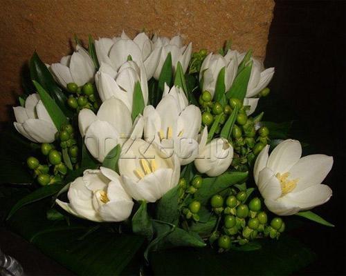 BOUQUET DI TULIPANI BIANCHI a Zuppardo Piante e Fiori Dal 1950 #fiori #nozze