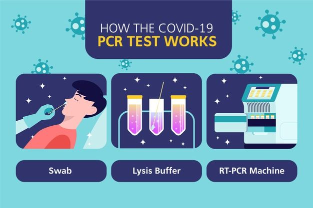 Pin On Covid 19 Pcr Test